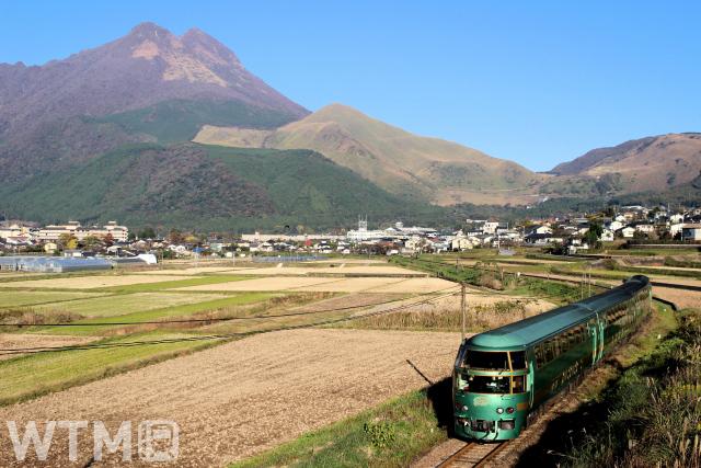 由布岳を背景に走行する特急「ゆふいんの森」JR九州キハ71系気動車(Nacho0927/写真AC)