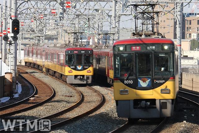 複々線区間を走行する京阪8000系電車並び(KUZUHA/写真AC)